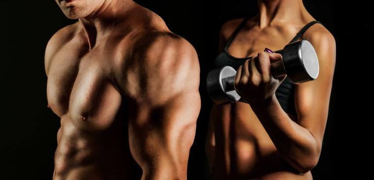 best bodyweight shoulders workout