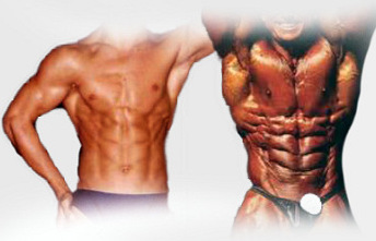 Steroid Beginner